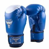 Боксерские перчатки детские RBG