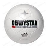 Футбольный мяч Derbystar MAGIC TT (размер 5)